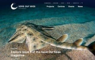 Save Our Seas Foundation